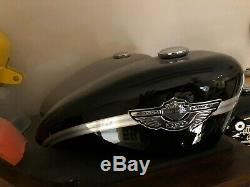 2003 Harley Davidson 100th Anniversary Fuel Tank XL Sportsternew Never Used